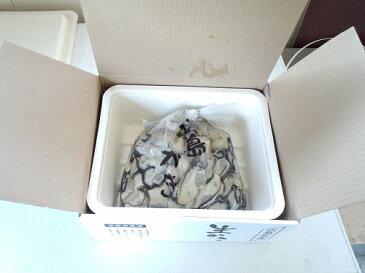 送料無料 産地直送 広島県産 生牡蠣(かき) むき身 1kg アミスイ かき小町 かき カキ 牡蛎 かき鍋 カキフライ