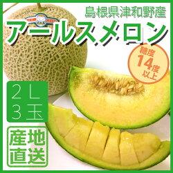 島根県産津和野メロン産地直送糖度保証14度以上アールスメロン2L3個入り1玉1.7kg以上津和野メロンパーク