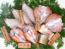 産地直送 島根県沖産 一夜干 弁天 のどぐろ、エテかれい、れんこ鯛、穴子 (冷凍)送料込み 岡富商店