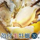 産地直送 広島産殻付きかき 30個 宮島近海で獲れた大粒かき 送料無料 クール便 カキ 牡蠣 鍋 (株)アミスイ