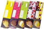 [送料込]ヒロタのシュークリーム5箱セット[1箱4個入][5箱SET][計20個][ヒロタ][洋菓子のヒロタ][HIROTA][オススメ][人気][スイーツ][菓子][洋菓子][シュー][デザート][ギフト][贈り物][メッセージカード][プリン][ミックスベリー][苺][ベリー][御中元][お中元][御礼]