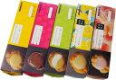 [送料込] ヒロタのシュークリーム 5箱セット (1箱4個入×5箱=2...