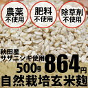 自然栽培 玄米麹 500g ★味噌作り、甘酒作りに無農薬・無肥料の生麹★