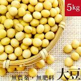 大豆 5kg 国産(青森県産) 自然栽培(無農薬・無肥料)