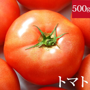 トマト500g 千葉県産・無農薬・無化学肥料