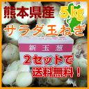 """熊本県産""""サラダ玉ねぎ""""新たまねぎ野菜/たまねぎ/タマネギ/..."""