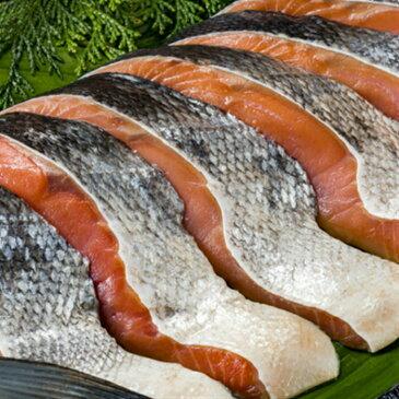 【当店★5がついてる鮭の切り身】鮭 シャケ甘塩 シャケ切り身 厚切り 当店人気の鮭 鮭の切り身 切りたて 厚切り 食べ応え抜群 10枚 当店の福箱