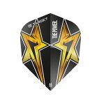 TARGET(ターゲット) POWER STAR NO6(パワースター ナンバーシックス) フライト ブラック <330510> フィル・テイラー選手モデル (ダーツ フライト ダーツフライト ダーツ 羽 darts flight) 【あす楽】