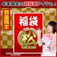 【数量限定】ダーツハイブ福袋2017<松Global> (ダーツ 福袋 2017 darts ダーツセット)