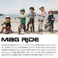 ヘルメット集合写真ストライダースケートボード