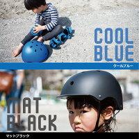 カラー説明ブルーブラック