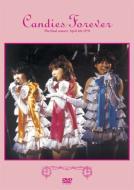 キャンディーズ / Candies Forever 【DVD】