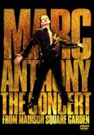 Marc Anthony マークアンソニー / Concert From Madison Square Garden 【DVD】