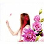 新居昭乃 アライアキノ / 金の波 千の波 【CD Maxi】