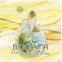 BIGMAMA(ビッグママ)のカラオケ人気曲ランキング第4位 「Paper-craft」を収録したアルバム「Dowsing For The Future」のジャケット写真。