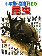 【送料無料】 昆虫 3 小学館の図鑑NEO / 小池啓一 【図鑑】