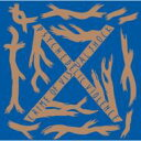 【送料無料】 X JAPAN / BLUE BLOOD 【CD】