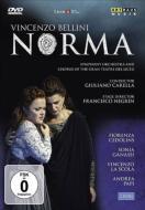 【送料無料】 Bellini ベッリーニ / 『ノルマ』全曲(日本語字幕付) ネグリン演出、カレッラ&リセウ大劇場、チェドリンス、ラ・スコーラ、他(2007 ステレオ)(2DVD) 【DVD】