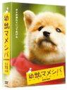 【送料無料】 幼獣マメシバ DVD-BOX 【DVD】