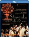 バレエ&ダンス / 『春の祭典』、『火の鳥』 マリインスキー・バレエ、イオシフィディ、コンダウーロワ、他 ゲルギエフ指揮(2008) 【BLU-RAY DISC】