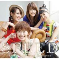 邦楽, ロック・ポップス SPEED Growing Sunflower CD Maxi