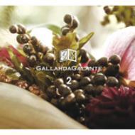 Gallardagalante 2 【CD】
