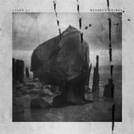 【送料無料】Lykke Li / Wounded Rhymes 輸入盤 【CD】