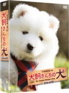 【送料無料】 連続テレビドラマ 犬飼さんちの犬 DVD-BOX 【DVD】