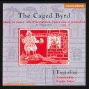 【送料無料】 Byrd バード / ウィリアム・バード:作品集〈宗教的迫害の時代の声楽、ヴァイオル、ハープシコードのための音楽第2巻〉ファジョリーニ 輸入盤 【CD】