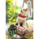 映画版 マメシバ一郎 【DVD】