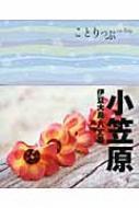 小笠原 伊豆大島・八丈島 ことりっぷ 【全集・双書】