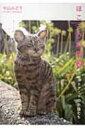 ほころび時間 2 フェルトアートの小猫たち ポストカードブッ...