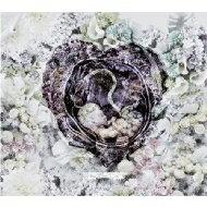 【送料無料】 B.I.G. JOE from MIC JACK PRODUCTION ビッグジョー / HEARTBEAT 【CD】