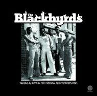 【送料無料】 Blackbyrds ブラックバーズ / Walking In Rhythm: Essential Selection 1973-1980...