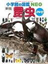 新版 昆虫 DVDつき 小学館の図鑑 NEO / 小池啓一