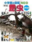 新版 昆虫 DVDつき 小学館の図鑑 NEO / 小池啓一 【図鑑】