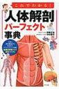 これでわかる!人体解剖パーフェクト事典 / 伊藤正裕 【本】