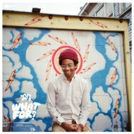 Toro Y Moi トロイモア / What For? 輸入盤 【CD】