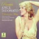 Rossini ロッシーニ / ColbranThe Muse-opera Arias: Didonato(S) E.muller / St.cecilia Academic O Etc 【CD】
