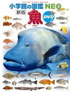 新版 魚 DVDつき 小学館の図鑑NEO / 井田齋 【図鑑】