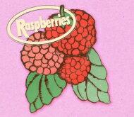 【送料無料】 Raspberries ラズベリーズ / Album Box Set 輸入盤 【CD】