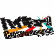 【送料無料】 ニンテンドー3DSソフト / ハイキュー!! Cross team match!…