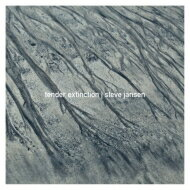 【送料無料】 Steve Jansen / Tender Extinction 【CD】