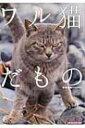 ワル猫だもの Sun Magazine Mook / 南幅俊