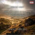 【送料無料】 Liszt リスト / パガニーニによる超絶技巧練習曲、パガニーニによる大練習曲、『ヴェニスの主題』による変奏曲 ヴォイチェフ・ヴァレチェク 輸入盤 【CD】