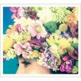 【送料無料】 佐野元春 & THE COYOTE BAND / MANIJU 【初回限定ボックス盤】 【CD】