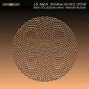 【送料無料】 Bach Johann Sebastian バッハ / 音楽の捧げもの、14のカノン鈴木雅明、バッハ・コレギウム・ジャパンのメンバー 輸入盤 【SACD】