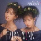 fairy w!nk / 天使はどこにいる? <Type A> 【CD Maxi】