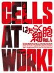 【送料無料】 はたらく細胞 4 【完全生産限定版】 【DVD】