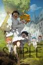 【送料無料】 約束のネバーランド 1 【完全生産限定版】 【DVD】